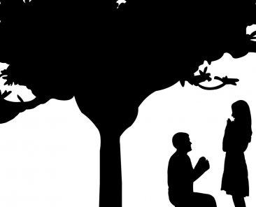 Yeniden Evlilikler